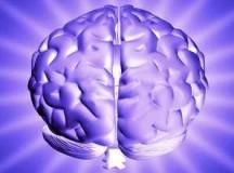 Il Nano Morgante | La variabile della lucidità